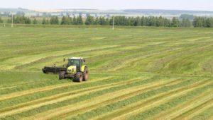 Интенсивные системы земледелия