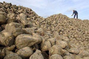Нормы выработки в сельском хозяйстве | Усадьба фермера