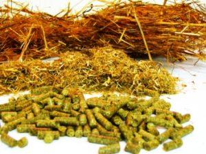Основные виды кормов для животноводства КРС | Усадьба фермера