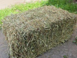 Как построить хранилище для сена своими руками | Усадьба фермера