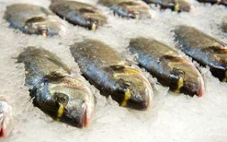 Способы хранения живой рыбы