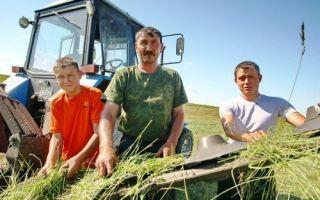 Что нужно знать начинающему фермеру?