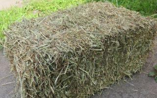 Как построить хранилище для сена