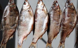 Технологии соления рыбы