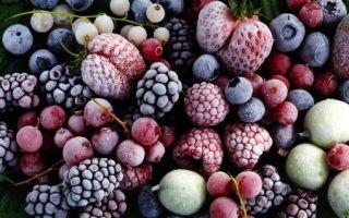 Способы транспортировки плодов и ягод
