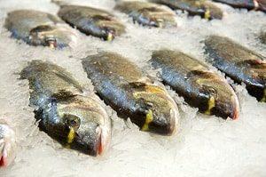 Способы хранения живой рыбы | Усадьба фермера