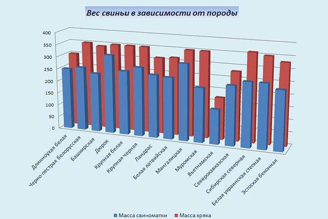 Что влияет на вес поросят
