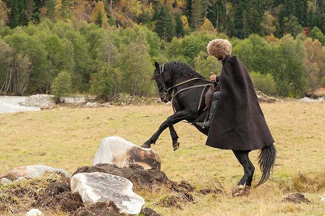 Использование карачаевских лошадей