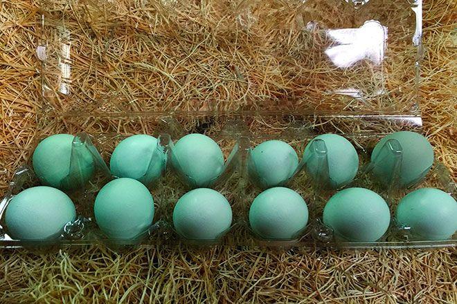 Яйца кур Араукана
