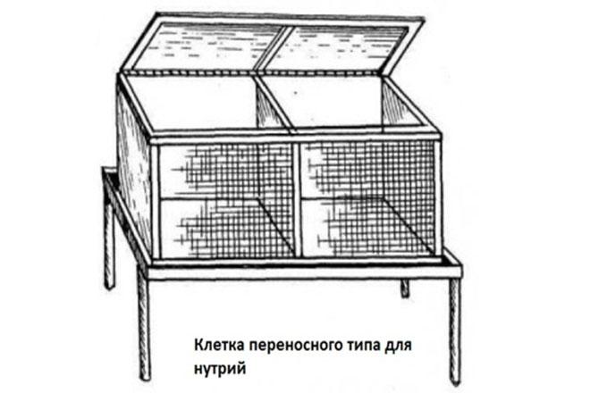 Переносная клетка для нутрий