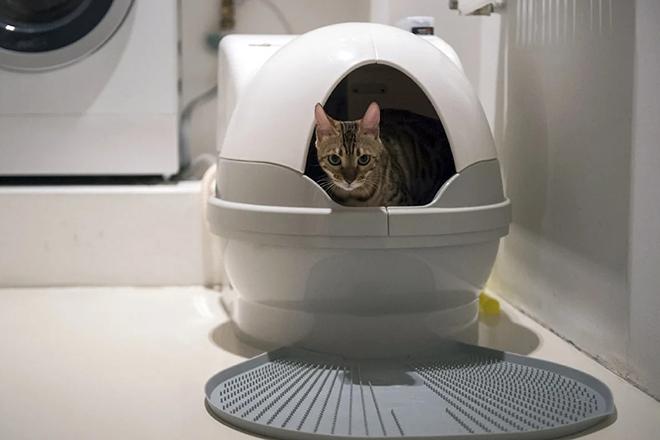 Лоток для кошек закрытого типа